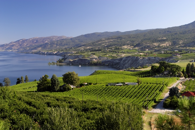 Sip and Savour at the Okanagan Spring Wine Festival