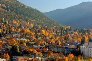 Fall color in BC's Kootenay region